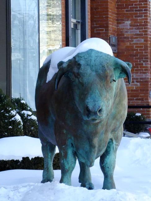 Hazelton Ave Bull Statue Yorkville Toronto Victoria Boscariol Chestnut Park Real Estate